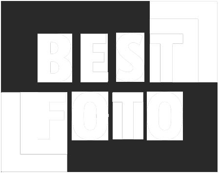 Foto & Video, Bryllup, Erhverv, Familie eller Børneportræt, Undervand Logo